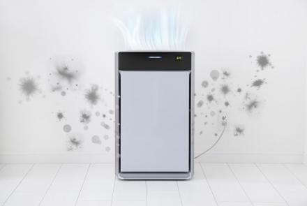 Owning an Air Purifier